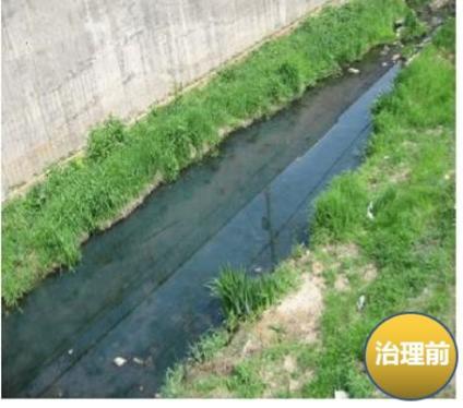 水体净化剂1.jpg