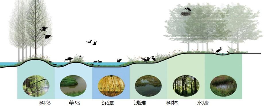 生境地形改造2.jpg