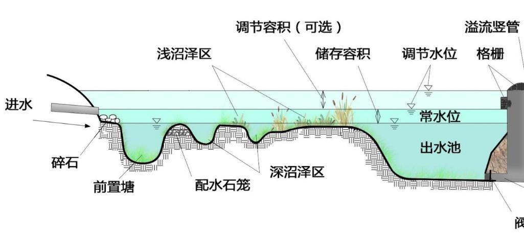 多功能生境湿地2.jpg
