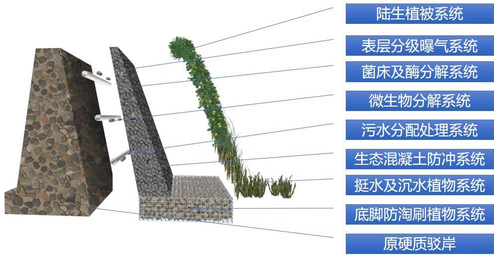 活性水岸1.jpg